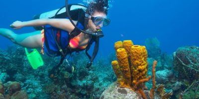 Diving adventures Sosua