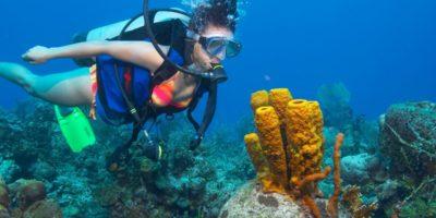 Diving adventures Sosua