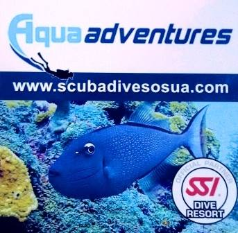 Acqua adventures logo
